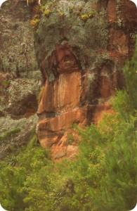 Face of an Inca man