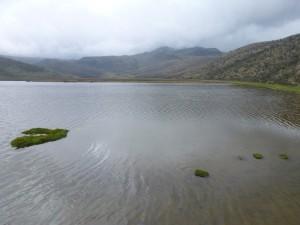 Limpiopungo Laguna ,3892m