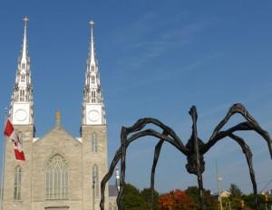 Basilica % Spider