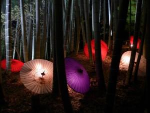 Kodaijin Temple. night viewing, November 29, 2014