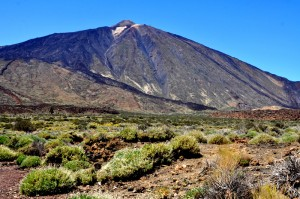 Mt Teide National Park